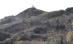"""El Gobierno de Canarias declara Bien de Interés Cultural la """"Cueva de los Canarios"""""""