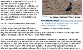 Las Canteras se llena de trampas para evitar una invasión de palomas ( laprovincia.es).