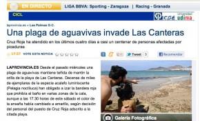 Una plaga de aguavivas invade Las Canteras ( laprovincia.es).