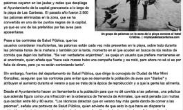 Las palomas se aficionan a la playa ( laprovincia.es).