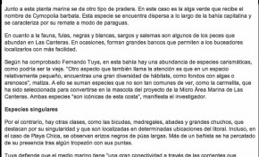 El tesoro marino de Las Canteras ( laprovincia.es).