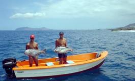 vaya pesca