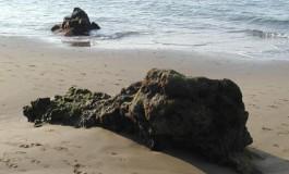 Rocas enterradas