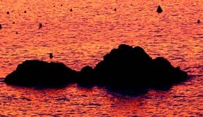 Relatos de verano: Odisea de unas gafas perdidas en el mar, cerca de la Peña la Vieja. 90 días de estancia submarina