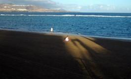 Disfrutando de un primer rayo de sol