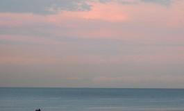 La mar en calma zorrocloca ¡¡
