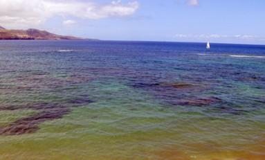 Los colores de nuestra bahía.