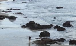 La gran marea vacía de está mañana dejó muchas rocas en seco.