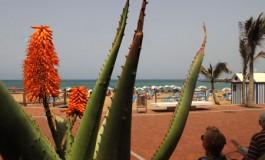 Día de calor en la playa de Las Canteras.
