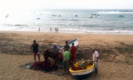Paquillo y su tropa preparan el trasmallo por si entra la sardina a la bahía.