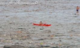 Nadadores en acción.