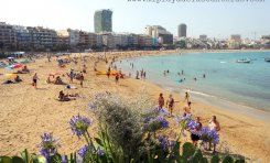 La playa de Las Canteras renueva hasta 2018 su sistema de Gestión Ambiental