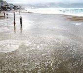 Las mareas del Pino