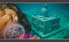 El Ayuntamiento se lleva la idea del parque submarino de esculturas ideado para Las Canteras  para la playa de La Laja.