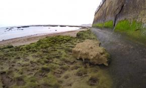 Un trozo de piedra que arrancó la marea