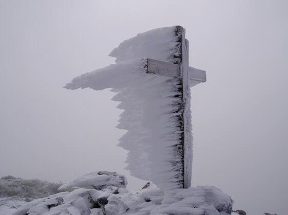 Cumbres de La Palma. Rayco Leal