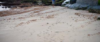 La arena recupera terreno en la zona del Charcón