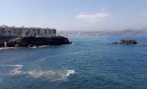 Aparecen manchones de microalgas en la bahía de El Confital