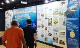 """El Museo Elder inaugura """"Las Canteras, la playa y sus historias"""", un recorrido histórico, físico y sentimental"""