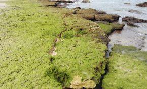 Nuevas grietas en las rocas nos indican la fuerza del oleaje