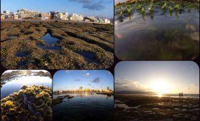 La Barra Grande, sus colores