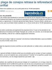 Una plaga de conejos retrasa la reforestación en El Confital   ( www.laprovincia.es).