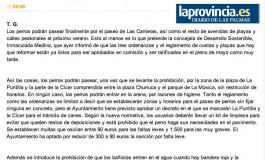 Los perros podrán pasear por Las Canteras a partir del verano ( www.laprovincia.es).