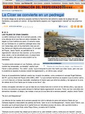 La Cícer se convierte en un pedregal ( www.laprovincia.es).