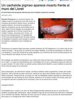 Un cachalote pigmeo aparece muerto frente al muro del Lloret ( laprovincia.es).