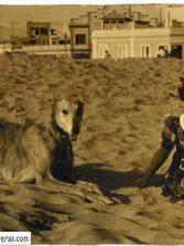 1938-Montse Naranjo-colecc Enrique Naranjo De La Peña
