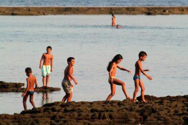 Cuentos a la orilla del mar