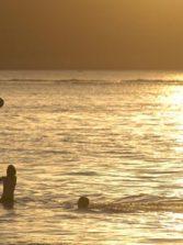Jugando a la pelota en un mar dorado
