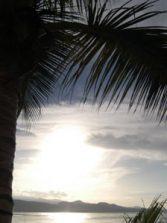 Canteras tropical
