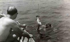 Un- abae-capturado detrás de La Barra en la década de los 50-colecc. Paco Farray