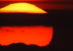 El calor mata: es hora de saber por qué y cómo adaptarse