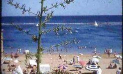 Vista de la playa de Las Canteras desde el antiguo colegio Viera y Clavijo-1953-colecc- Juan Melián.