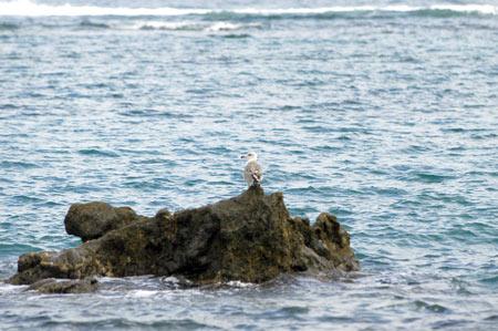 En el día de San Juan volvió la tranquilidad a la playa de Las Canteras.