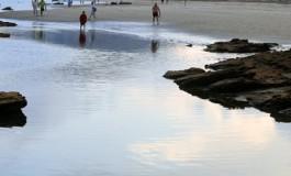 Temprano a marea vacía.