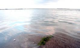 Los rebosos siempre arrojan víctimas a la orilla, pero la vida continuará……