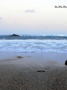 """Este jueves sabremos los relatos premiados. Relatos del concurso """"Palabras de gratitud a la playa de las Canteras"""""""