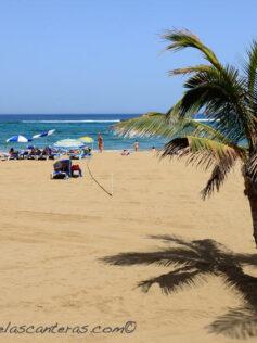 Las Palmas de Gran Canaria estrena un semáforo on line para informar sobre el nivel de aforo en las playas