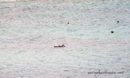 Floting.