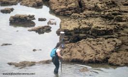 Se estudiará durante un año como camina la arena de Las Canteras.