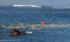 250 nadador@s este sábado en la T-Classics de Las Canteras