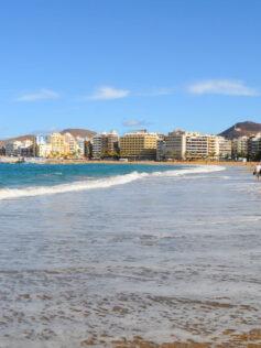 El Ayuntamiento y la Universidad de Las Palmas de Gran Canaria celebran la 1ª Jornada 'Investiga en Las Canteras'