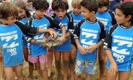 Reportaje fotográfico: En busca de la libertad. Emocionante despedida de siete tortugas en Las Canteras