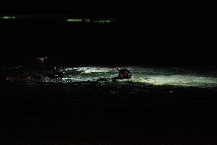 fotosub-nocturno-lpgc-2016-oliver-bossecker