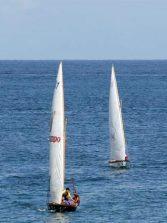37 barquillos de Vela Latina inician la temporada en Canarias