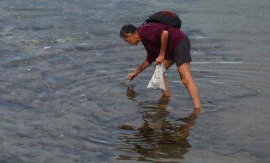 Canarias prohibirá los plásticos de un solo uso a partir del 2021