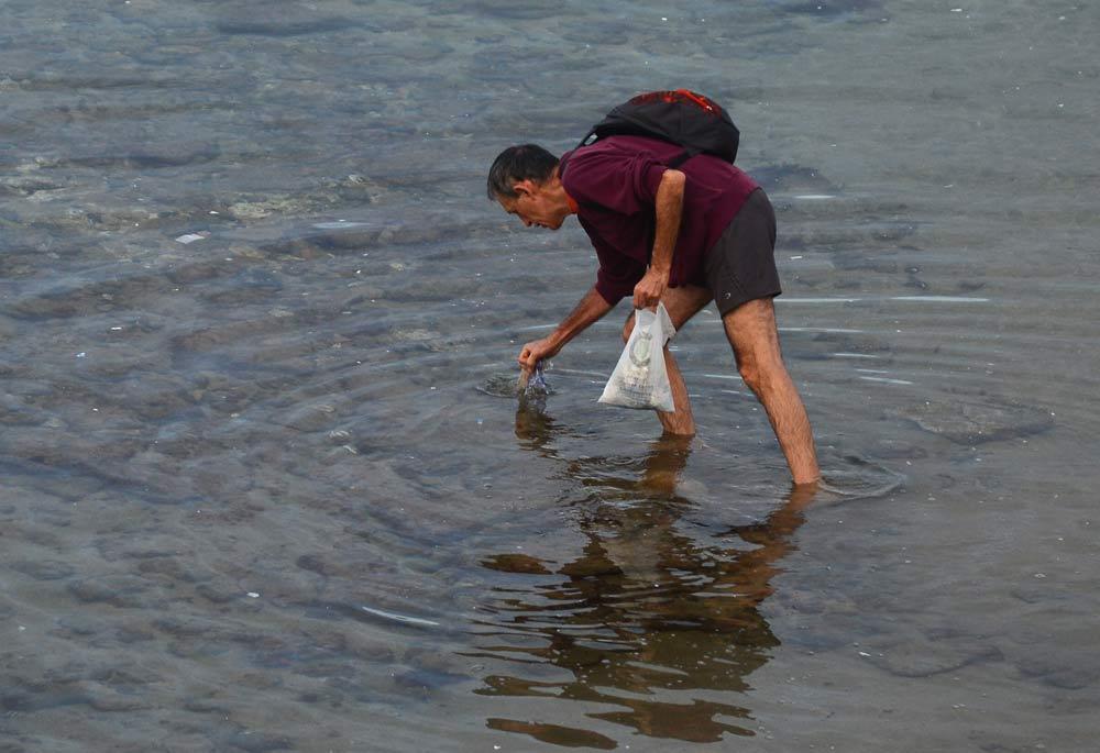 El hombre que recoge los plásticos